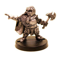 DWM019 Dwarf Heavy Leader