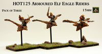 HOT125  Armoured Elf Eagle Riders