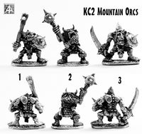KC2 Mountain Orcs