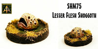 SHM75 Lesser Flesh Shoggoth