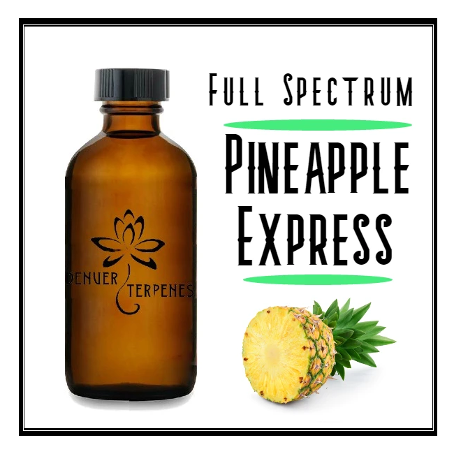 Pineapple Express Full Spectrum Terpene Blend