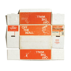 #FLYOFFTHEWALL commemorative box print ¬ vans off the wall (youth)
