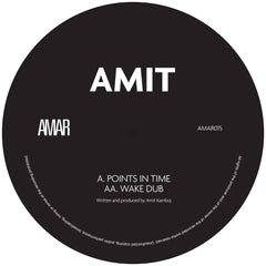 Amit - Points in Time / Wake Dub [pre order]