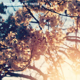 Kiyoko 'Sea Of Trees' (Downloads)