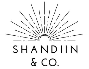 Shandiin & Co.