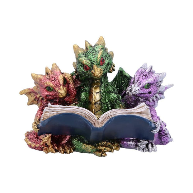 Tales of Fire Reading Book Dragon Figurine