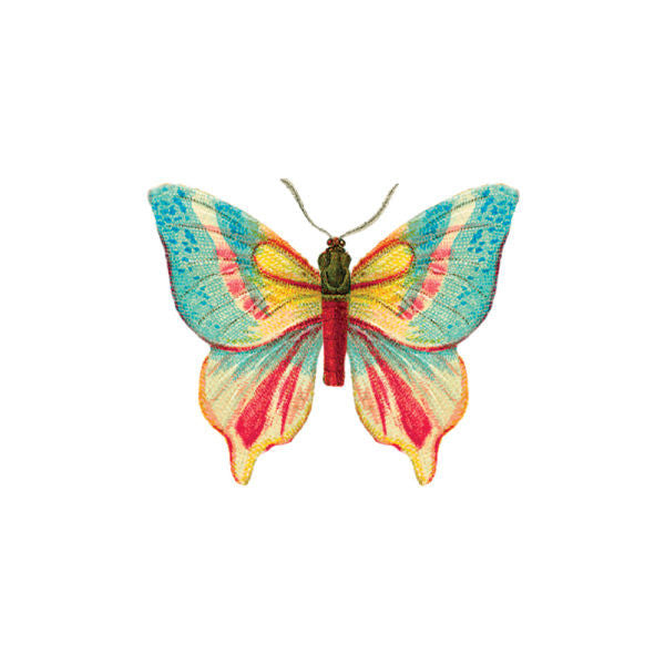 Tattly Temporary Tattoos - Butterfly (set of 2)