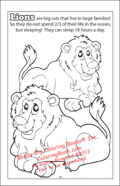 Coloring Book - Super Safari