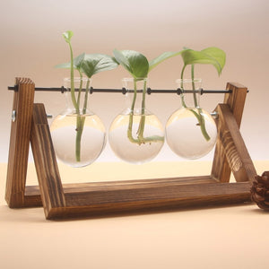 Hydroponic Plant Vases Wooden Frame Glass Tabletop - TrendsfashionIN