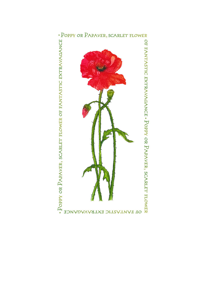 Birthday Card - Single poppy - 4L16