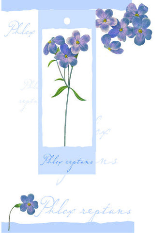 Birthday Card with attachment - Purple flowers - 4PC12
