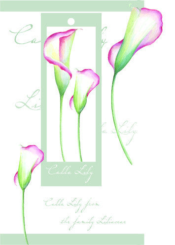 Birthday Card with attachment - Lilies - 4PC11