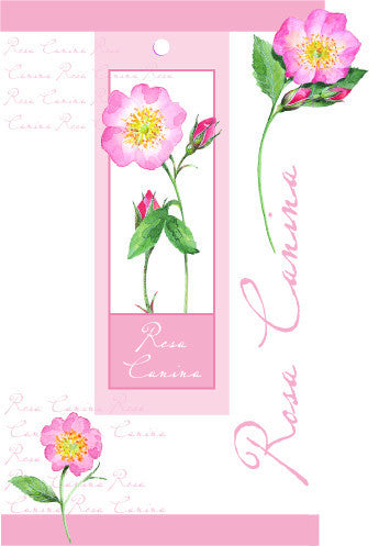 Blank Card with attachment - Roses - 4PC10
