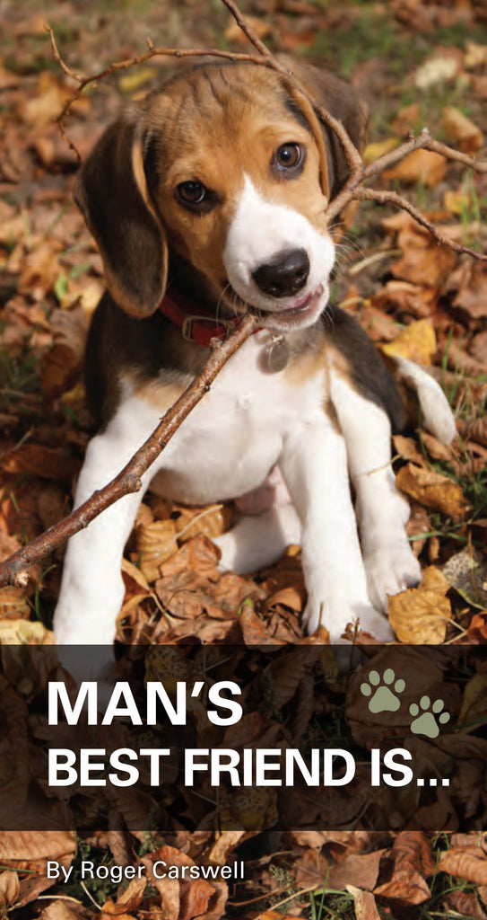Man's best friend is...
