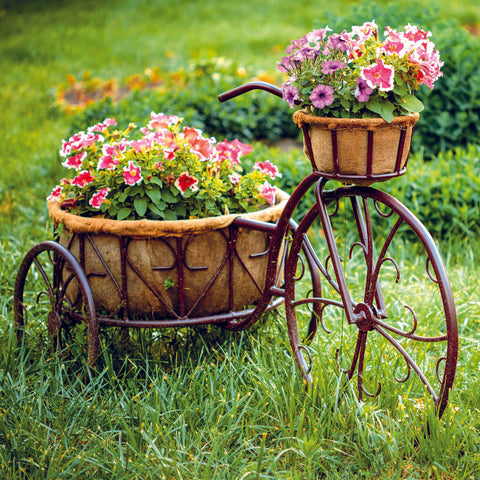 NEW - Just to say - Floral Bicycle - S204