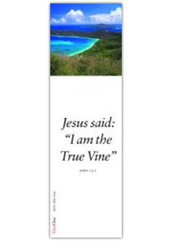 Jesus said: I am the True Vine