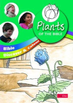 Bible discover and colour: Plants