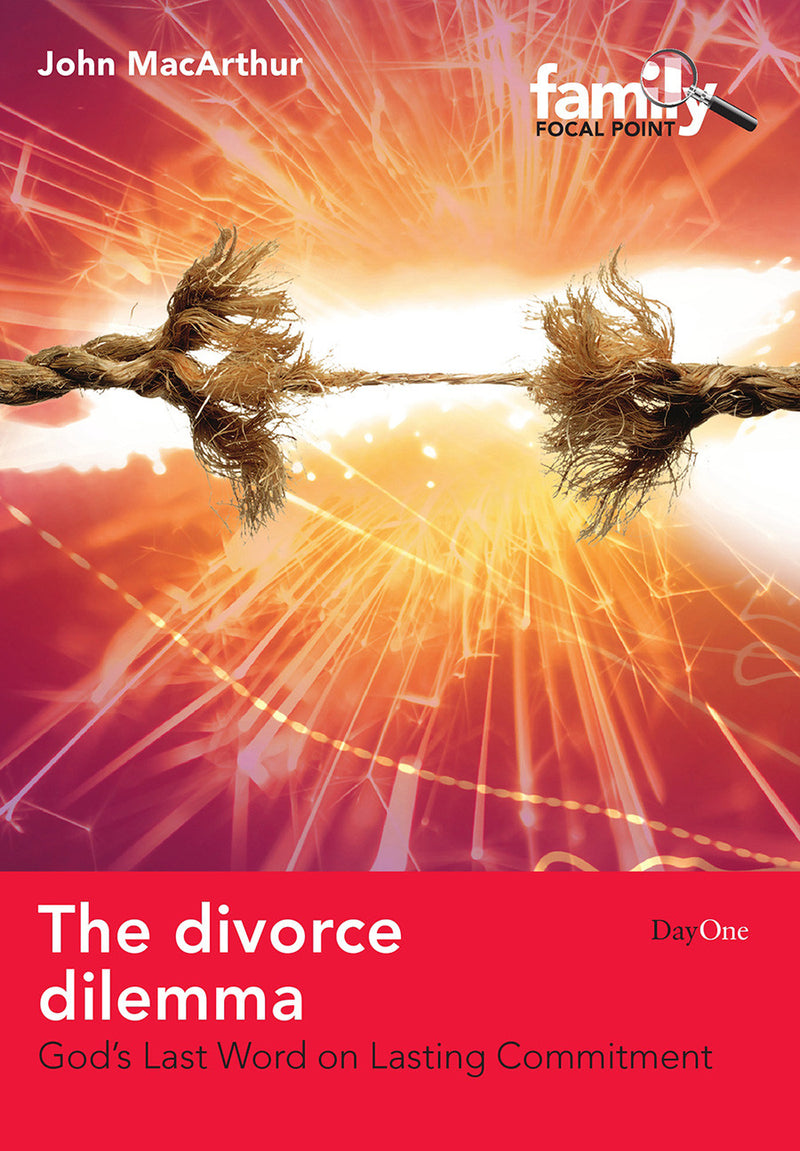 The divorce dilemma eBook