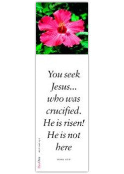 You seek Jesus... who was crucified