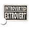 Fantastic Fam Inc Patch - Introverted Extrovert