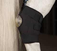Incrediwear Equine Hock Boot