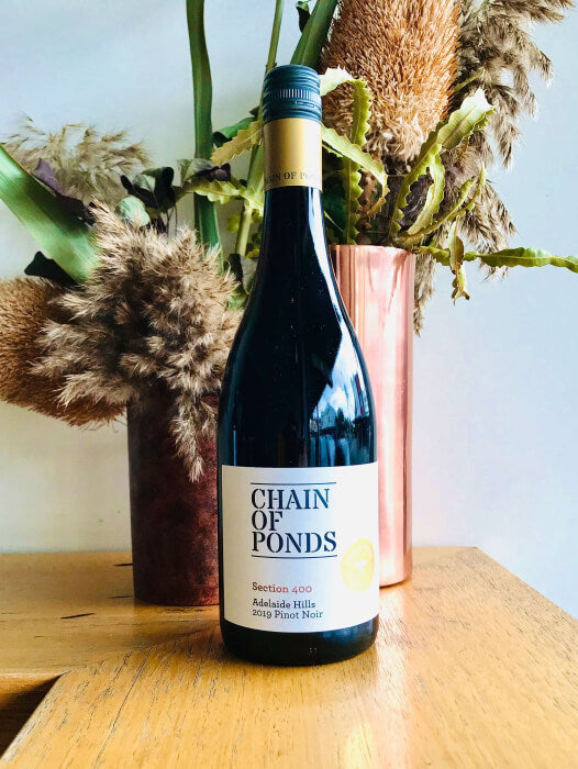 2019 Chain of Ponds Pinot Noir