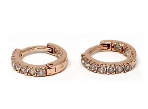 Micro Pave Earrings - Accent's Novato