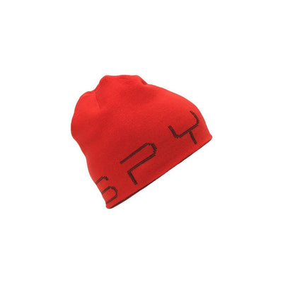 Spyder 2021 Junior REVERSIBLE BUG Hat