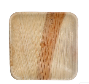 Palm Leaf Compostable Plate