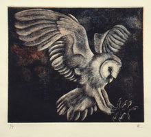 Load image into Gallery viewer, Barn Owl III