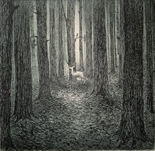Load image into Gallery viewer, A forest