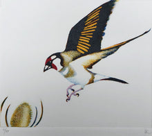 Load image into Gallery viewer, Goldfinch monoprint