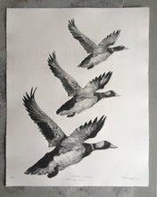Load image into Gallery viewer, Tair Hwyaden : Three Ducks
