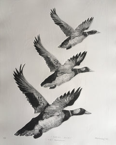 Tair Hwyaden : Three Ducks