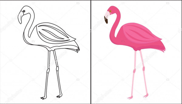 coloriage de flamant rose avec modele simple