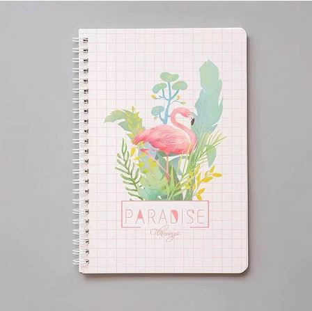 cahier spirale flamant rose