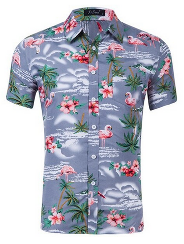 Chemise Flamant Rose Homme Gris