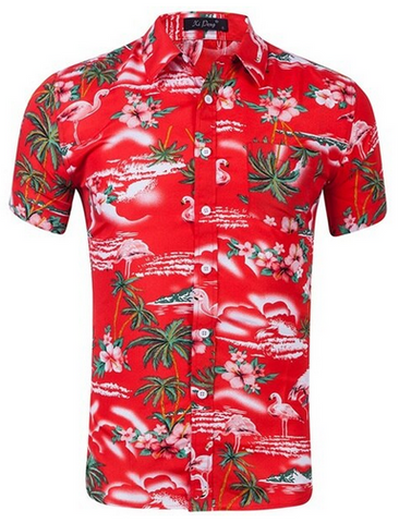 Chemise Flamant Rose Homme Rouge