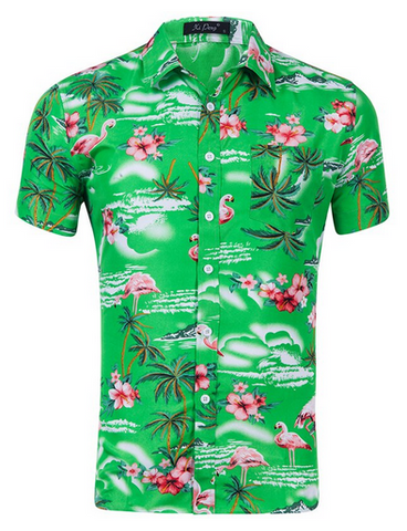 Chemise Flamant Rose Homme Vert