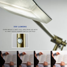 Load image into Gallery viewer, Vera LED floor lamp