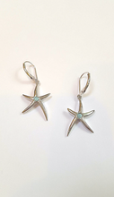 Load image into Gallery viewer, Starfish earring w. Larimar