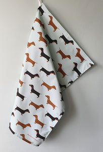 Dachshunds tea towel hanging up