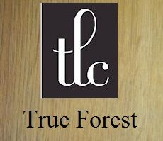 TLC Forest (Rustic Beam 5184)