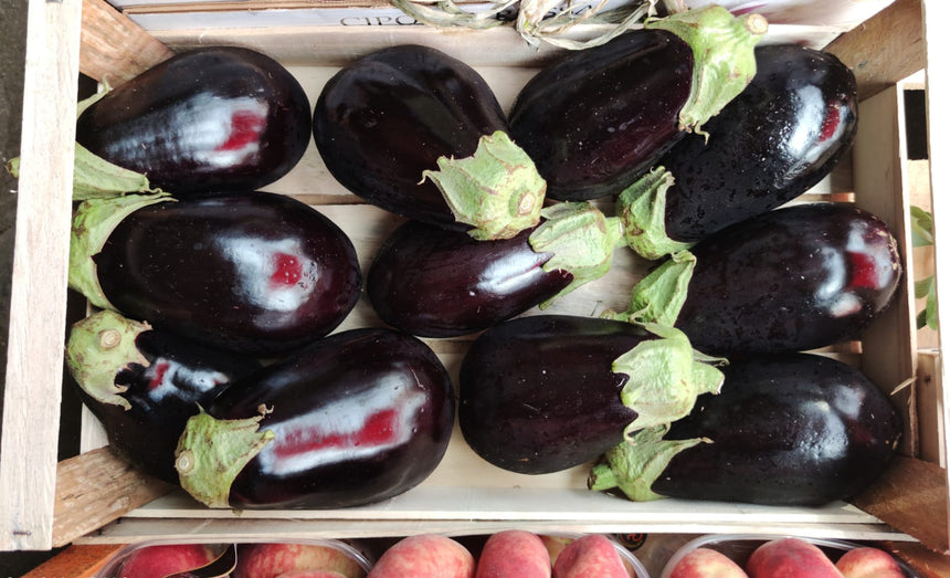 Black aubergines from Sicily 1Kg packet