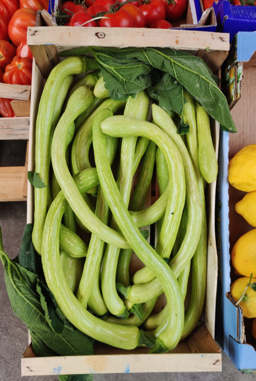 Courgettes trombette 1Kg packet
