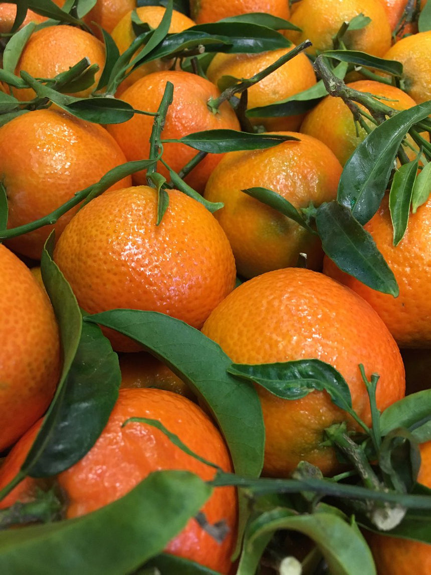 Leafy Clementine from Sicily (1Kg)