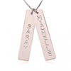 Two Vertical Bars Necklace