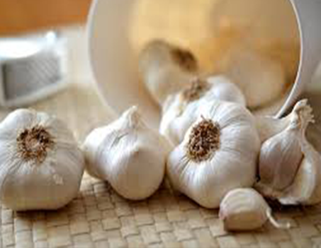 Garlic Heart Health