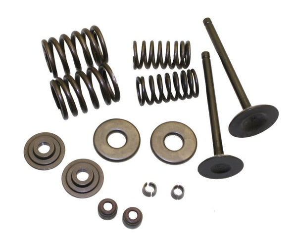 Universal Parts VOG 260 Valve Rebuild Kit