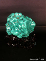 Natural blue turquoise stone with redwood stand 334.6 grams